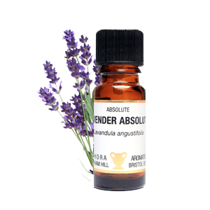 Lavender Absolute Essential Oil  10ml