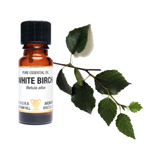 White Birch Essential Oil  10ml