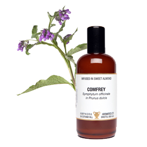 Comfrey Infused Oil 100ml