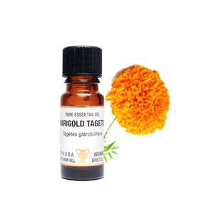 Marigold Tagetes Essential Oil 10mls