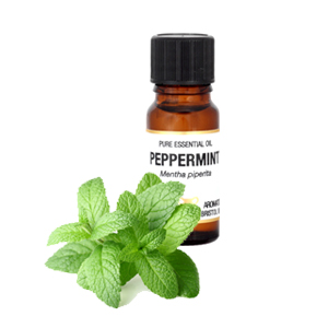 Peppermint Essential Oil 10mls