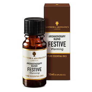 Festive Aromatherapy Blend (Warming) 10ml Single