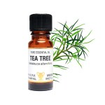 51_tea tree_bottle+compo copy_300x300.jpg
