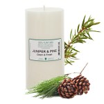 745_e.o candles 6x3_juniper&pine_300x300.jpg