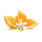 Neroli Absolute Oil