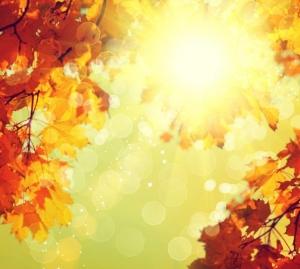 AA Skincare Autumn Skincare Tips