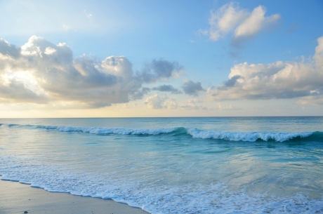 Naturally Effective Alternatives to Microbeads