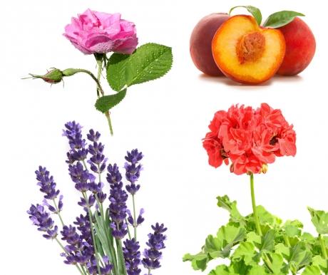 All Natural DIY Serum for Dry & Sensitive Skin